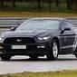 Jazda ford mustang - kierowca - tor jastrząb kielce, radom - 1 okrążenie