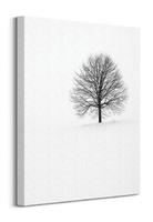 Samotne drzewo - obraz na płótnie