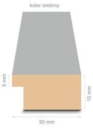 Srebrna rama 30,5x91,5 cm