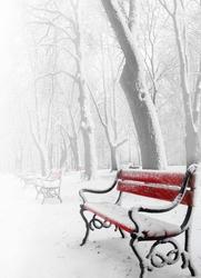 Czerwona ławka w śniegu - fototapeta