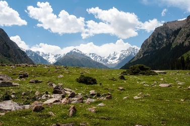 Fototapeta zielona łąka w górach fp 1445