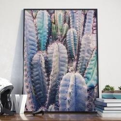 Plakat w ramie - cacti rainbow , wymiary - 40cm x 50cm, ramka - czarna , ramka - biała