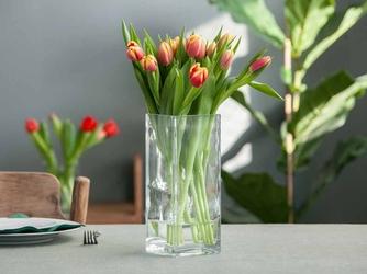 Wazon szklany na kwiaty edwanex kwadratowy 25 cm
