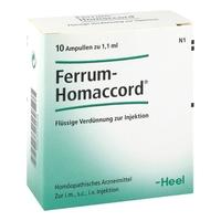 Ferrum homaccord amp.
