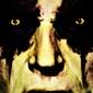 Face it star wars gwiezdne wojny - darth bane - plakat wymiar do wyboru: 59,4x84,1 cm