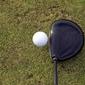 Fototapeta piłka z kijem do golfa fp 1183