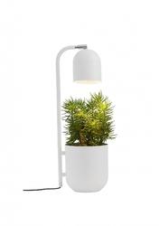 Kaspa :: lampa stołowa botanica biała
