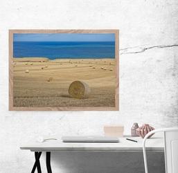 Szkocja, stonehaven, wybrzeże morza północnego - plakat premium wymiar do wyboru: 50x40 cm