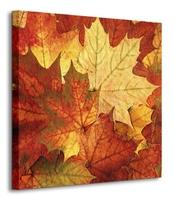 Jesienne liście - obraz na płótnie