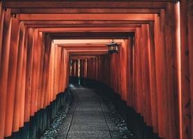 Drewniany tunel - fototapeta