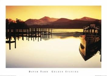 David Tarn Golden Evening - reprodukcja