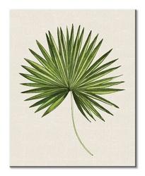 Tropical leaf iii - obraz na płótnie