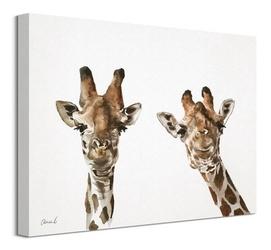 Dwie żyrafy - obraz na płótnie