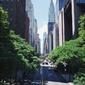 Empire state building - plakat wymiar do wyboru: 70x100 cm