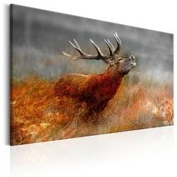 Obraz - ryczący jeleń