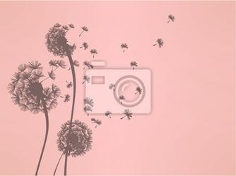 Naklejka dandelion vector plik eps10