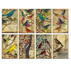 Zestaw papierów MINI 24 szt. - Birds - BRD