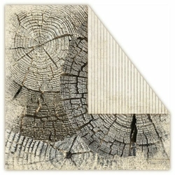 Papier Terra Incognita 30,5x30,5 cm - Earth - 05
