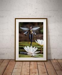 Wasp - plakat wymiar do wyboru: 60x80 cm