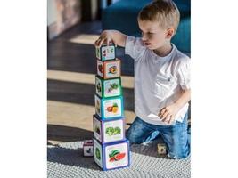 Piramida zabaw owoce warzywa dwujęzyczna piramidka edukacyjna