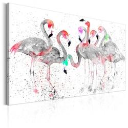 Obraz - taniec flamingów