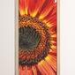 Fototapeta na drzwi kwiat p25