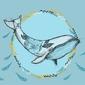 Kwiecisty wieloryb - plakat wymiar do wyboru: 80x60 cm