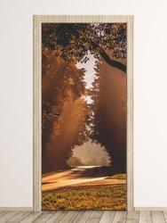 Fototapeta naklejka na drzwi droga przez las fp 6304