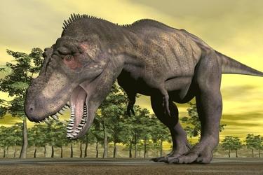 Fototapeta dinozaur 1797