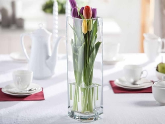 Wazon szklany na kwiaty edwanex liść kwadratowy 40 cm