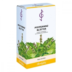 Herbata z liści mięty pieprzowej