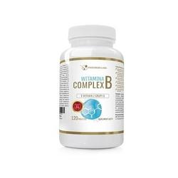 Progress labs vitamin b complex 120 tabs
