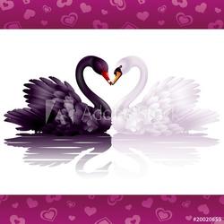 Tapeta ścienna dwa pełne wdzięku łabędzie: czarne i białe serce