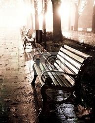 Obraz ławka w nocy aleja z sygnalizatorów w odessie ,