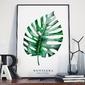 Monstera - plakat w ramie , wymiary - 70cm x 100cm, kolor ramki - biały