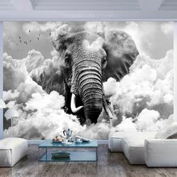 Fototapeta - słoń w chmurach czarno-biały