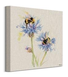 Bees on cornflowers - obraz na płótnie