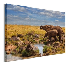 Elephants of maasai mara - obraz na płótnie