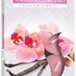 Bispol, wanilia - orchidea, podgrzewacze zapachowe, 6 sztuk