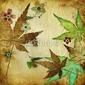 Fotoboard na płycie starodawny liściaste tło