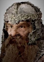 Polyamory - gimli, władca pierścieni - plakat wymiar do wyboru: 20x30 cm