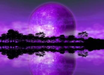 Rising of the moon - fototapeta