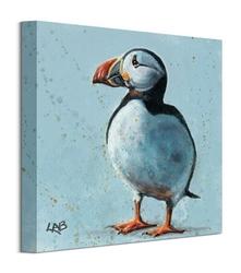 Sea parrot - obraz na płótnie