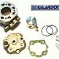 Gilardoni cnick12750g1 cylinder nicasil+głowica derbi sendagpr  lc 48mm
