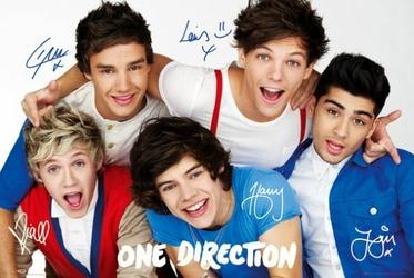 One Direction Colours - plakat