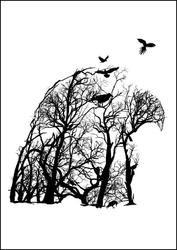 Orzeł - plakat wymiar do wyboru: 40x50 cm