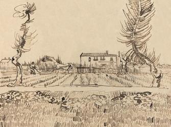 Ploughman in the fields near arles, vincent van gogh - plakat wymiar do wyboru: 80x60 cm