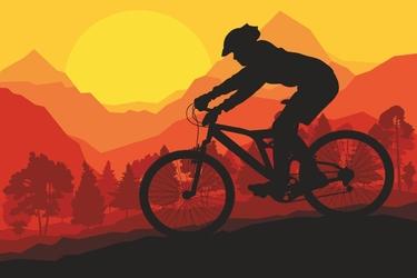 Fototapeta rower downhill 2482