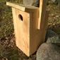 Budka lęgowa dla większych ptaków