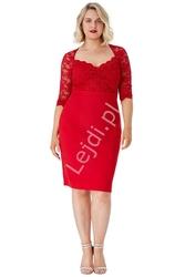 Czerwona sukienka z koronki plus size, goddiva 1544